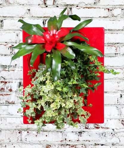 wallmount flowerpot for green decor