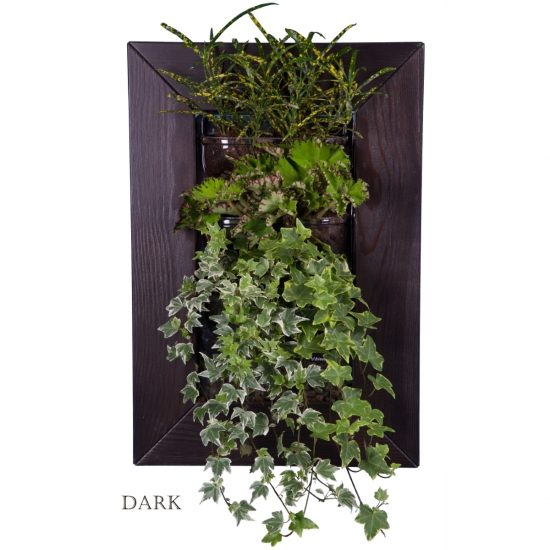 wall planter for green decor